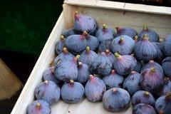 Figues fraîches dans une boîte Images stock