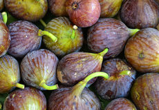 Figues fraîches Photos libres de droits