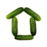 Figura casa del cetriolo Immagine Stock