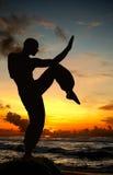 Figura da arte marcial na praia imagem de stock