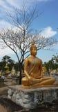 Figura de assento de Buddha Foto de Stock Royalty Free
