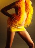 Figura de la muchacha en una falda foto de archivo libre de regalías