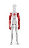 A figura de madeira manequim com bandeira bodypaint - Canadá Fotografia de Stock