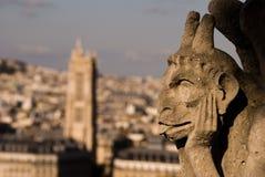 Figura de Notre Dame Imagen de archivo libre de regalías