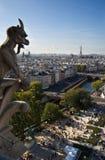 Figura de Notre Dame Imagens de Stock