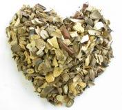 Figura del cuore di di erbe Immagine Stock
