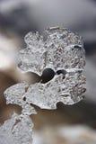 Figura del ghiaccio naturale che assomiglia al segno di domanda Immagini Stock