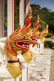 Figura del Naga dorato (drago) in tempiale tailandese Fotografie Stock