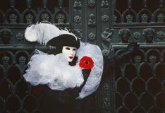 Figura di carnevale di Venezia in un costume ed in una maschera in bianco e nero che tengono una rosa rossa Venezia Italia Fotografia Stock Libera da Diritti