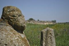 Figura di pietra Scythian della steppa Fotografie Stock Libere da Diritti