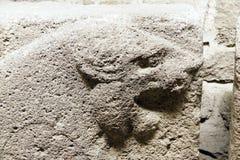 Figura di un leone di urlo Fotografie Stock