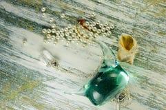 Figura di vetro e della conchiglia del cigno e del pendente Immagini Stock