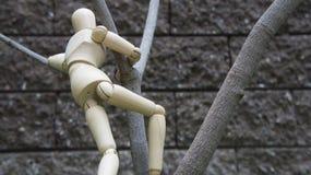 Figura humana de madeira jardim da árvore da escalada Imagens de Stock