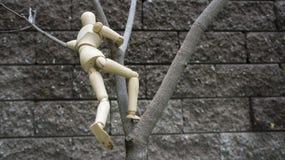 Figura humana de madeira jardim da árvore da escalada Fotos de Stock