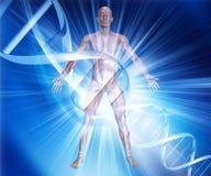 figura médica masculina 3D en fondo abstracto de la DNA Imagenes de archivo