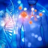 figura maschio medica 3D con il bronco evidenziato e le cellule del virus illustrazione di stock