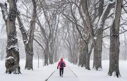 Figura masculina só em um blizzard imagem de stock royalty free