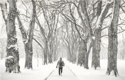 Figura masculina sola en una ventisca Fotografía de archivo