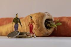 Figura miniatura condizione dell'uomo e della donna accanto alle grandi verdure e monete di conteggio Fondo basso di profondit? d fotografie stock libere da diritti