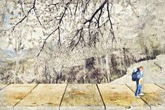 figura miniatura di viaggiatore con zaino e sacco a pelo con la scena della natura Digital Art Impas fotografie stock