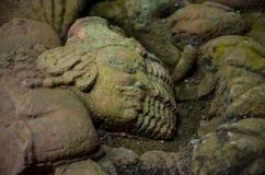 Figura que cinzela na pedra em Angkor/caras múltiplas fotografia de stock royalty free