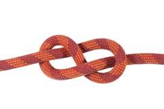 Figura roja nudo del ocho Foto de archivo