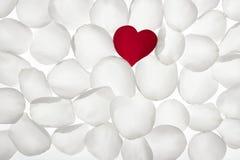 Figura rossa del cuore del petalo di rosa sopra bianco Immagini Stock