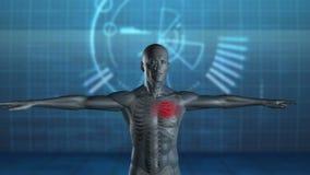 Figura rotatoria del hombre con el corazón destacado stock de ilustración