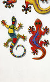 Figura salamanders Fotografia de Stock Royalty Free