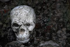 Figura umana del cranio che mette su terra: Stile in bianco e nero Fotografia Stock Libera da Diritti