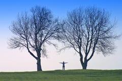 Figura umana ed alberi Immagini Stock