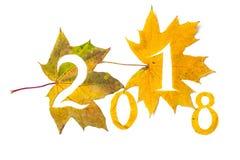 2018 figuras cinzeladas das folhas de bordo amarelas Fotografia de Stock