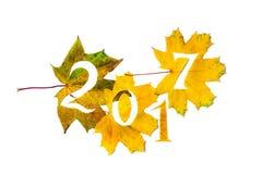 2017 figuras cinzeladas das folhas de bordo amarelas Fotos de Stock Royalty Free