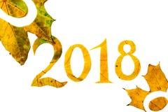 2018 figuras cinzeladas das folhas de bordo no fundo branco Fotografia de Stock Royalty Free