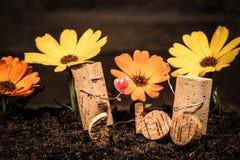 Figuras da cortiça do vinho, pares do conceito no amor com flores imagens de stock royalty free