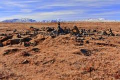 Figuras da rocha em uma paisagem islandêsa Foto de Stock