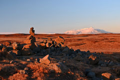 Figuras da rocha em uma paisagem islandêsa Imagens de Stock