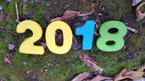 figuras de madeira coloridas 2018 na grama e nas folhas Imagens de Stock Royalty Free