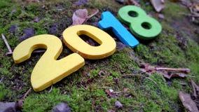 figuras de madeira coloridas 2018 na grama e nas folhas Fotos de Stock Royalty Free