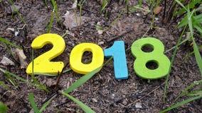 figuras de madeira coloridas 2018 na grama e nas folhas Fotos de Stock