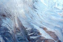 Figuras do inverno Fotos de Stock