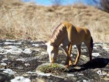 Figuras dos cavalos fotografia de stock royalty free