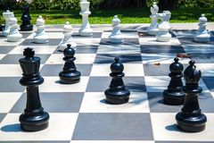 Figuras para el juego en ajedrez en la naturaleza foto de archivo libre de regalías