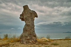 Figure. Dried old tree trunk in the form of ancient figures.Picture taken 12.09.1010 Royalty Free Stock Image