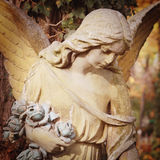 Figure Of  Angel Royalty Free Stock Photos