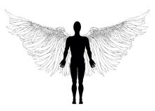Figure of an angel. Vector illustration Stock Photography