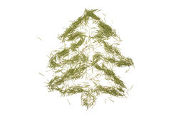 Figure ate from the needles. Spruce, lined with green needles on white background Stock Photo