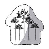 Figure bare oak trees icon. Illustraction design image Stock Photography
