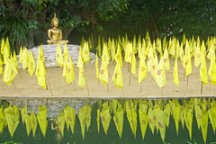 Figure of Buddha on the island among the yellow flag Stock Images