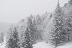 Figure che camminano nella foresta di inverno Fotografia Stock Libera da Diritti